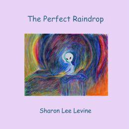 The Perfect Raindrop