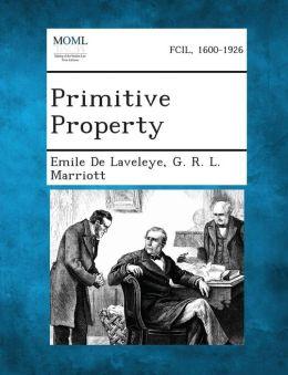 Primitive Property