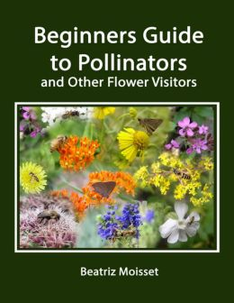 Beginners Guide to Pollinators and Other Flower Visitors