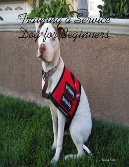 Training a Service Dog for Beginners