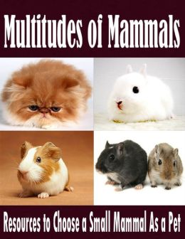 Multitudes of Mammals - Resources to Choose a Small Mammal As a Pet