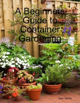 A Beginners Guide to Container Gardening