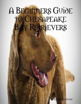 A Beginners Guide to Chesapeake Bay Retrievers
