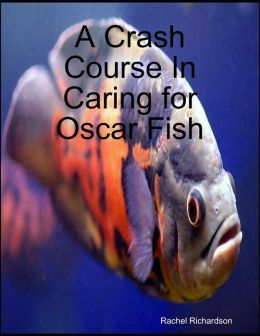 A Crash Course In Caring for Oscar Fish