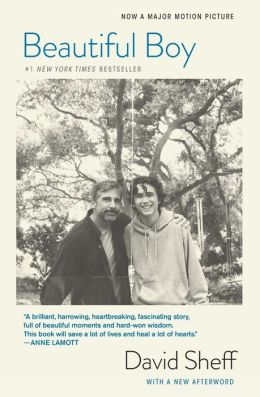 BOOK | Beautiful Boy (Tie-In): A Father's Journey Through His Son's Addiction