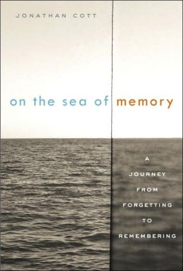 On the Sea of Memory: A Journey from Forgetting to Remembering