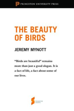 The Beauty of Birds: From