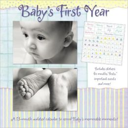 Baby's 1st Year : A 13-month Undated Calendar to Record Baby's Memorable Moments