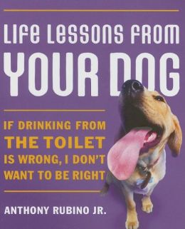 Life Lessons From Your Dog: If Drinking from the Toilet is Wrong, I Don't Want to be Right