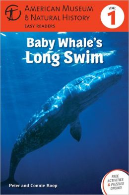 Baby Whale's Long Swim: (Level 1)