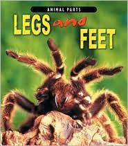 Legs and Feet