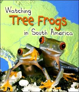 Watching Tree Frogs in South America