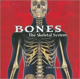 Bones: The Skeletal System