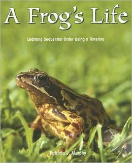 A Frog's Life: Learning Sequential Order Using a Timeline