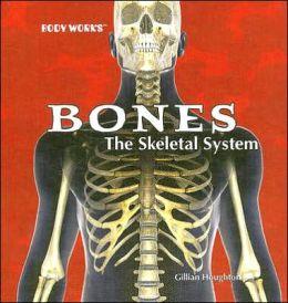 Bones: The Skeletal System