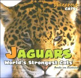 Jaguars: World's Strongest Cats