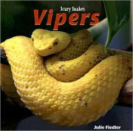Vipers: Scary Snakes