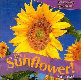 It's a Sunflower!