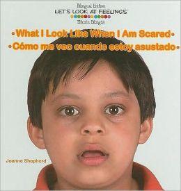 What I Look Like When I Am Scared: Como Me Veo Cuando Estoy Asustado