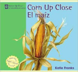 Corn up Close/el Maiz