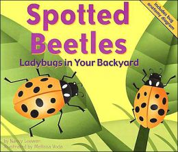 Spotted Beetles: Ladybugs in Your Backyard