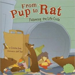 From Pup to Rat: Following the Life Cycle