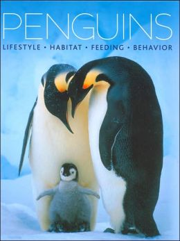 Penguins: Lifestyle, Habitat, Feeding, Behavior