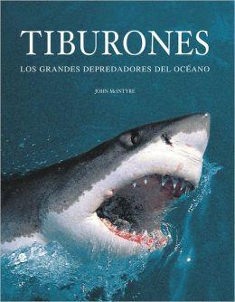 Tiburones Los grandes depredadores del océano
