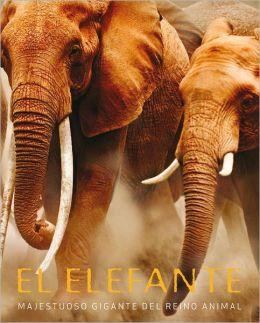 El elefante. Majestuoso gigante del reino animal