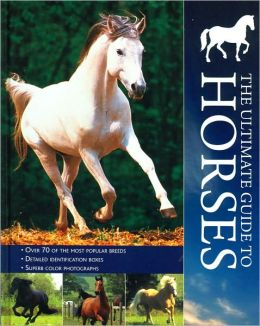 The Ultimate Guide to Horses