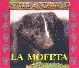La Mofeta (Skunk)