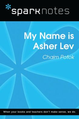 My Name is Asher Lev (SparkNotes Literature Guide)