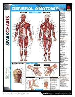 General Anatomy (SparkCharts)