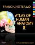 Book Cover Image. Title: Atlas of Human Anatomy:  with Student Consult Access, Author: Frank H. Netter