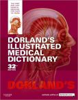 Book Cover Image. Title: Dorland's Illustrated Medical Dictionary, Author: Dorland
