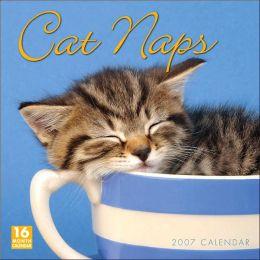 2007 Cat Naps Wall Calendar