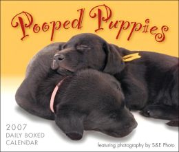 2007 Pooped Puppies Daily Box Calendar