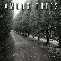2009 Among Trees Wall Calendar