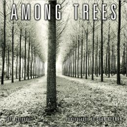 2012 Among Trees Wall Calendar