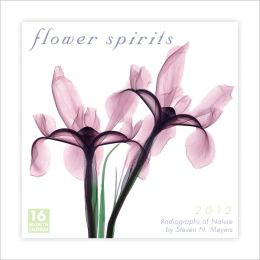 2012 Flower Spirits Wall Calendar