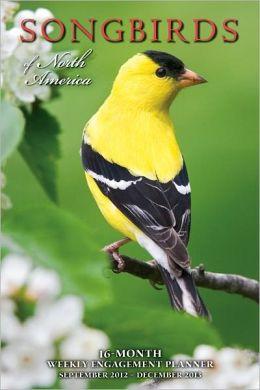 2013 Songbirds of North America Engagement Calendar