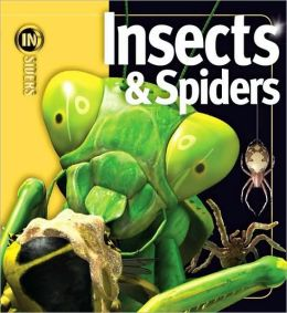 Insects and Spiders (Insiders Series)