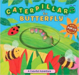 Caterpillar to Butterfly: A Colorful Adventure