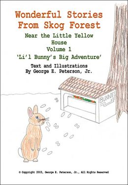 Wonderful Stories from Skog Forest Near the Little Yellow House, Volume 1: 'Li'l Bunny's Big Adventure'