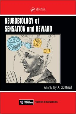 Neurobiology of Sensation and Reward