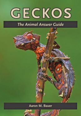 Geckos: The Animal Answer Guide