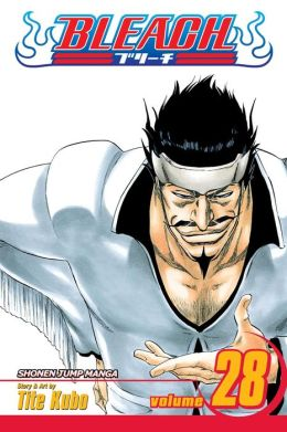 Bleach, Volume 28: Baron's Lecture Full-Course