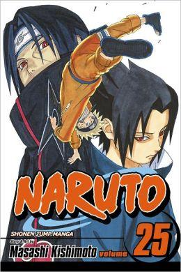 Naruto, Volume 25: Brothers