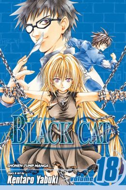 Black Cat, Vol. 18: Guiding Light