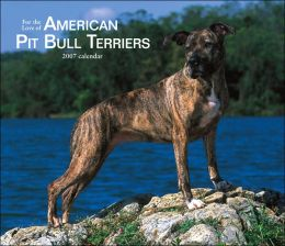 2007 American Pit Bull Terriers Deluxe Wall Calendar